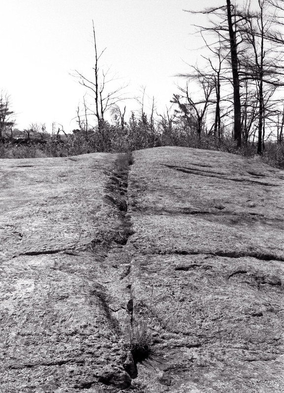 Bisecting the Rock_
