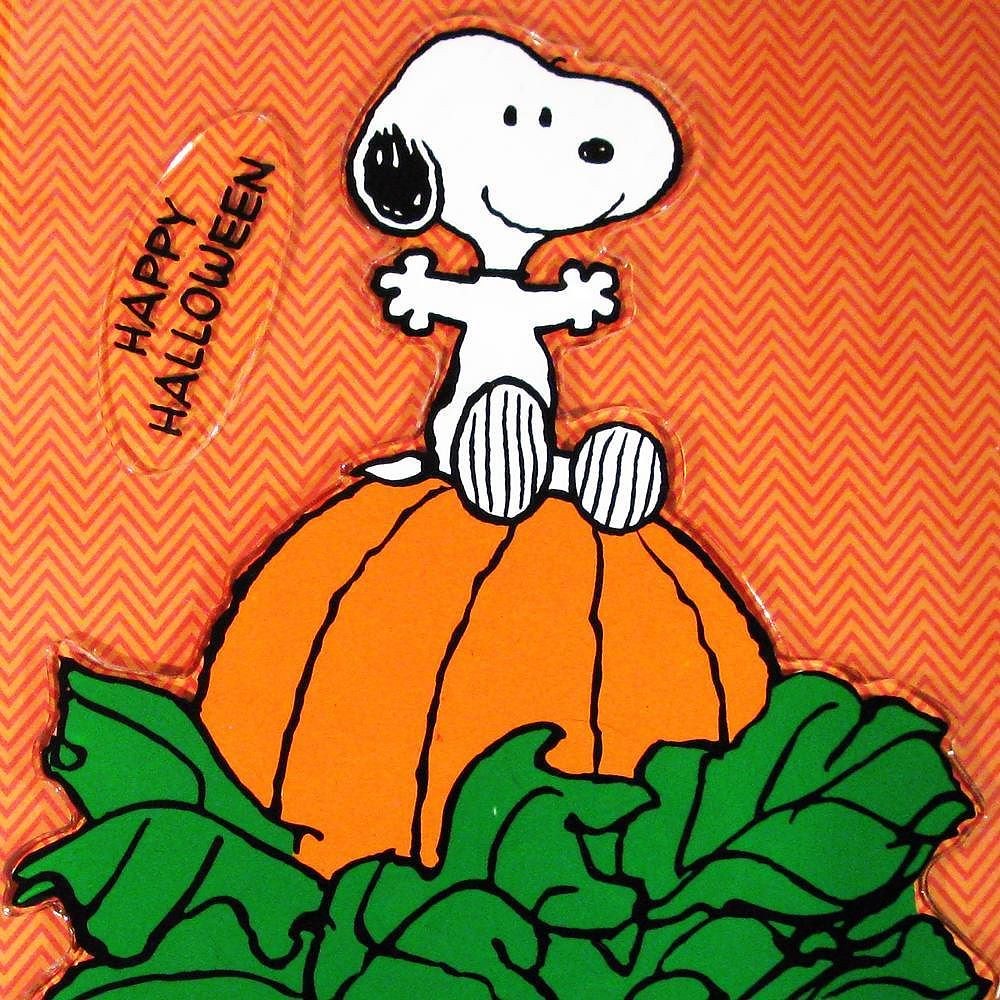 pumpkin picking! #snoopy #peanuts #halloween #forsale #col… | flickr