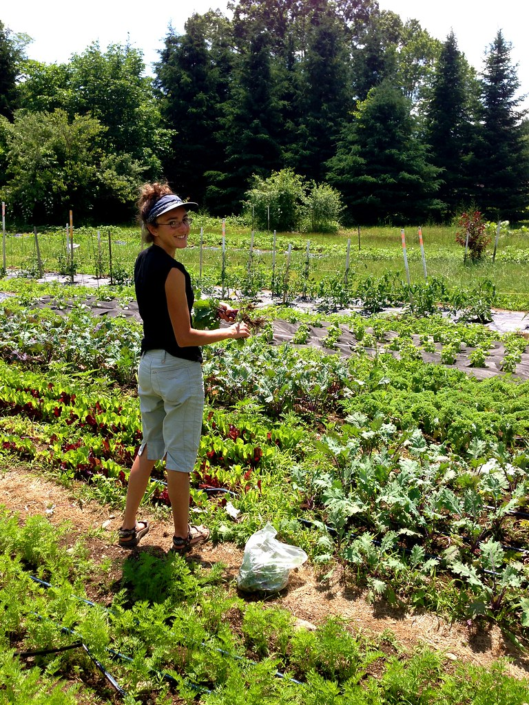 Kitchen Gardener Renee Ciulla Of The Kitchen Gardener At Her Garden In Ne Flickr