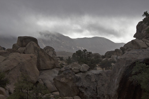 Clouds Hide the Summit of Ryan Mountain | by Joshua Tree National Park