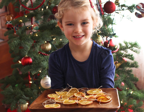 Orange Slices Ornaments | by Farm Fresh To You -