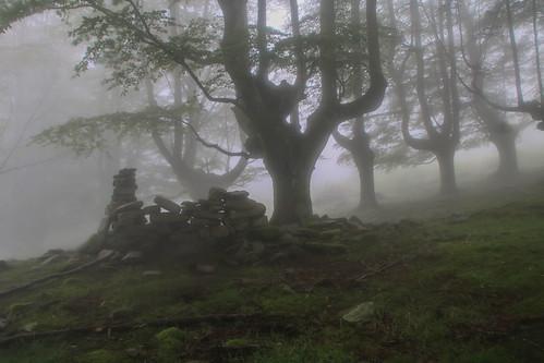 Parque Natural de #Gorbeia #Orozko #DePaseoConLarri #Flickr - -644