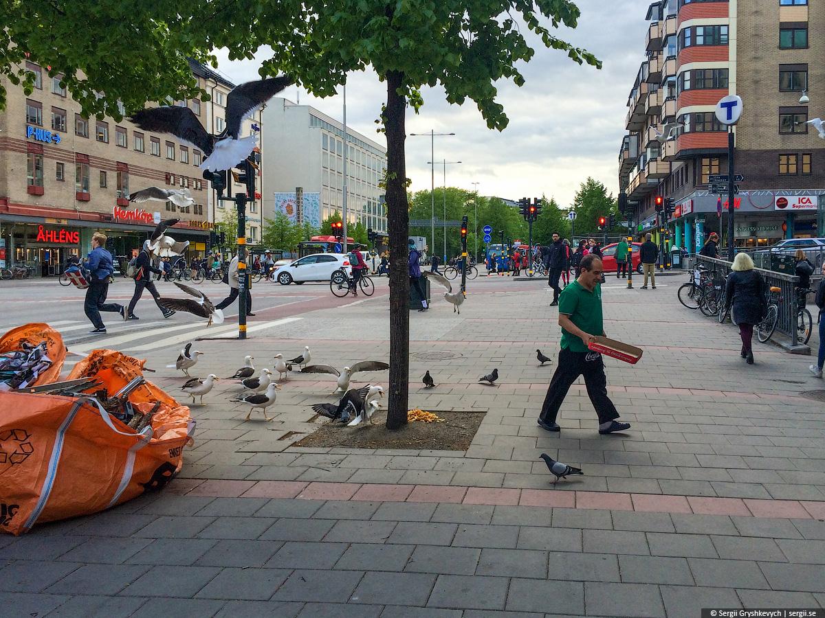 stockholm_sloyanka_4-30