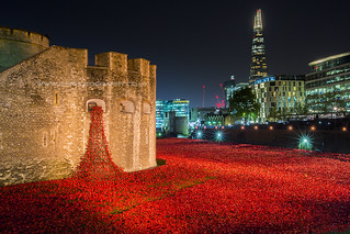 London Poppy Display at The Tower of London at Night | by iesphotography