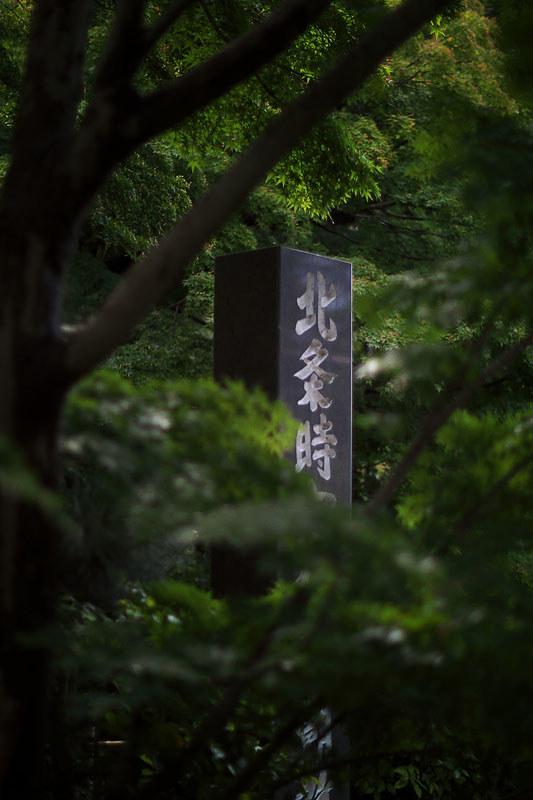 北鎌倉あじさい散歩 円覚寺