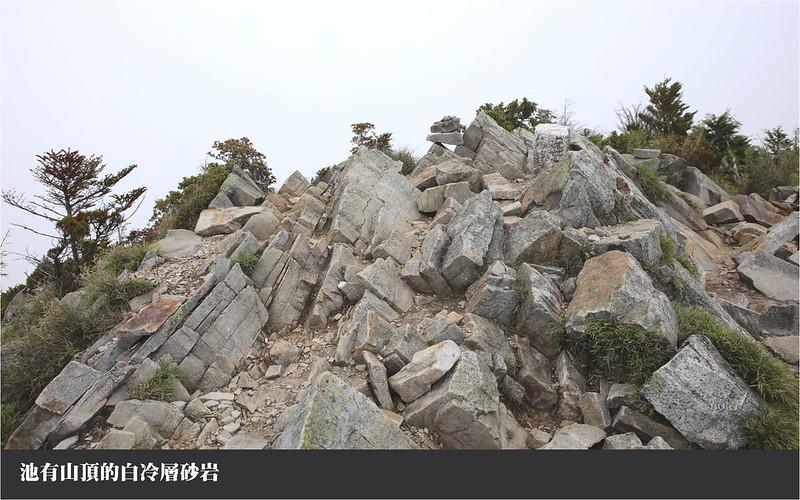 池有山頂的白冷層砂岩