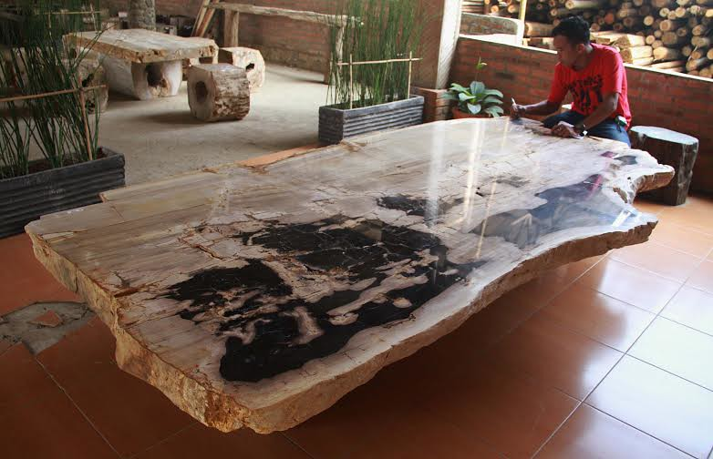 Attractive ... PETRIFIED WOOD DINING TABLE   By IndoGemstone