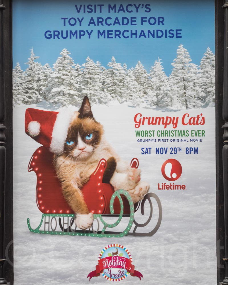 Grumpy cats worst christmas ever movie poster macys dep flickr grumpy cats worst christmas ever movie poster macys department store new york city thecheapjerseys Image collections