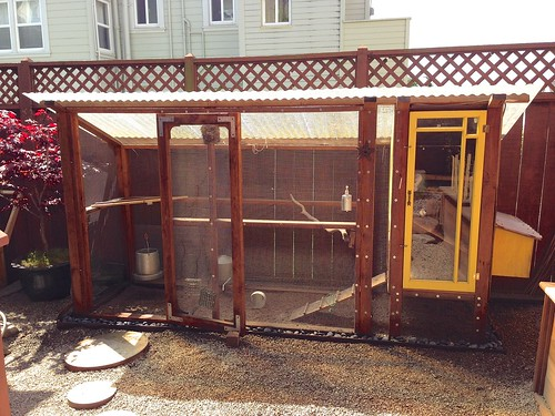 Our first chicken coop back in San Francisco circa 2012 | by djaiko