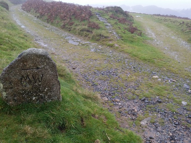 Day 7: Moors Way marker stone to Ivybridge