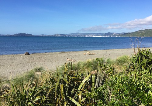 Petone Beach | by Follow 2 C