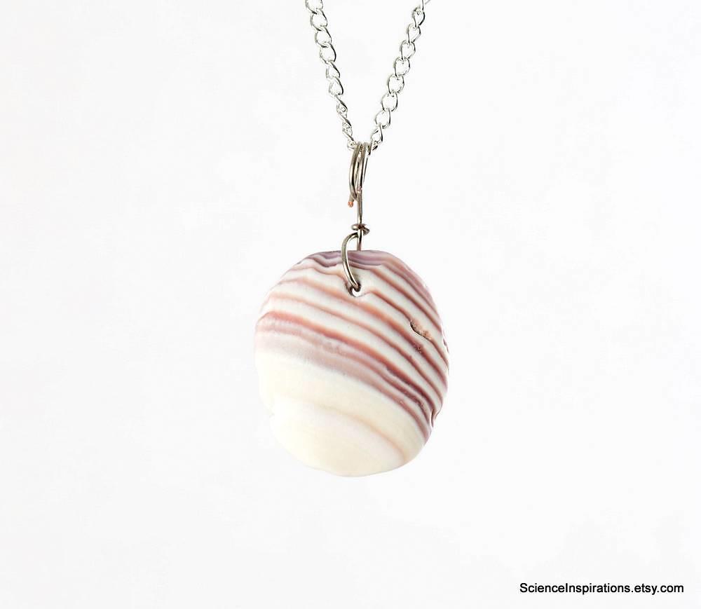 Pink seashell pendant necklace free shipping striped s flickr pink seashell pendant necklace free shipping striped sea shell necklace sea shell fragment aloadofball Gallery