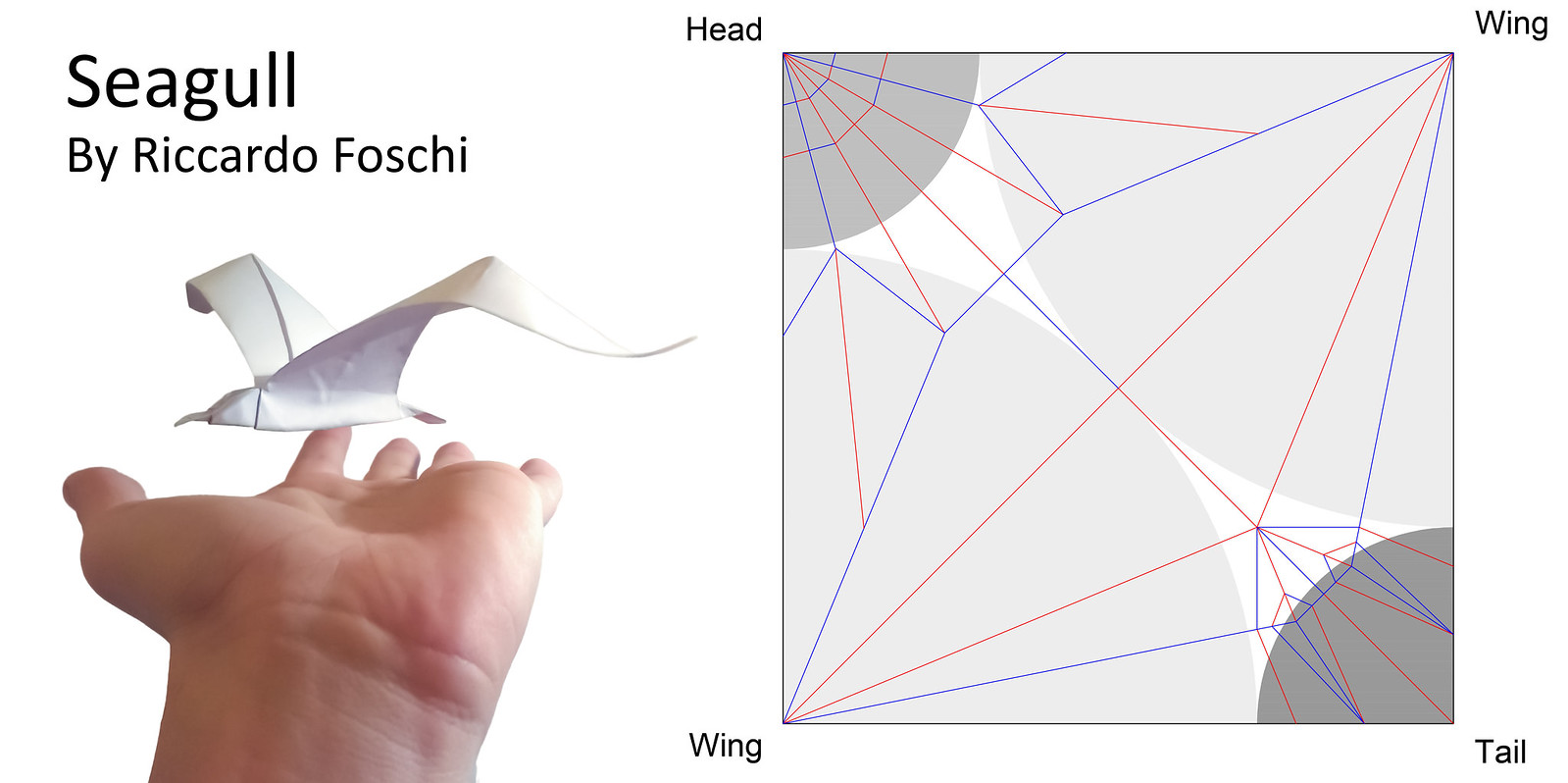 My Crease Patterns And Diagrams Flickr Origami Koi Diagram