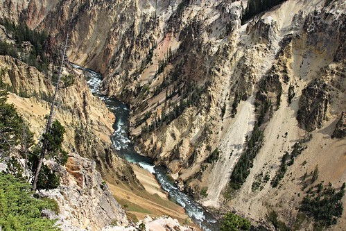 IMG_8623_Canyon_from_Brink_of_Lower_Falls