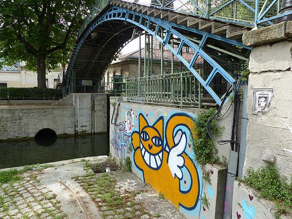 chat sur le canal saint-martin