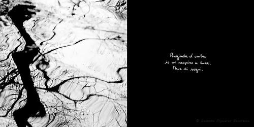 Calligrafie d'Anima (5)