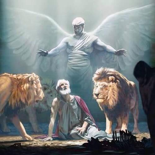 #boanoite #graça & #paz O Anjo Do Senhor Acampa-se Ao Redo