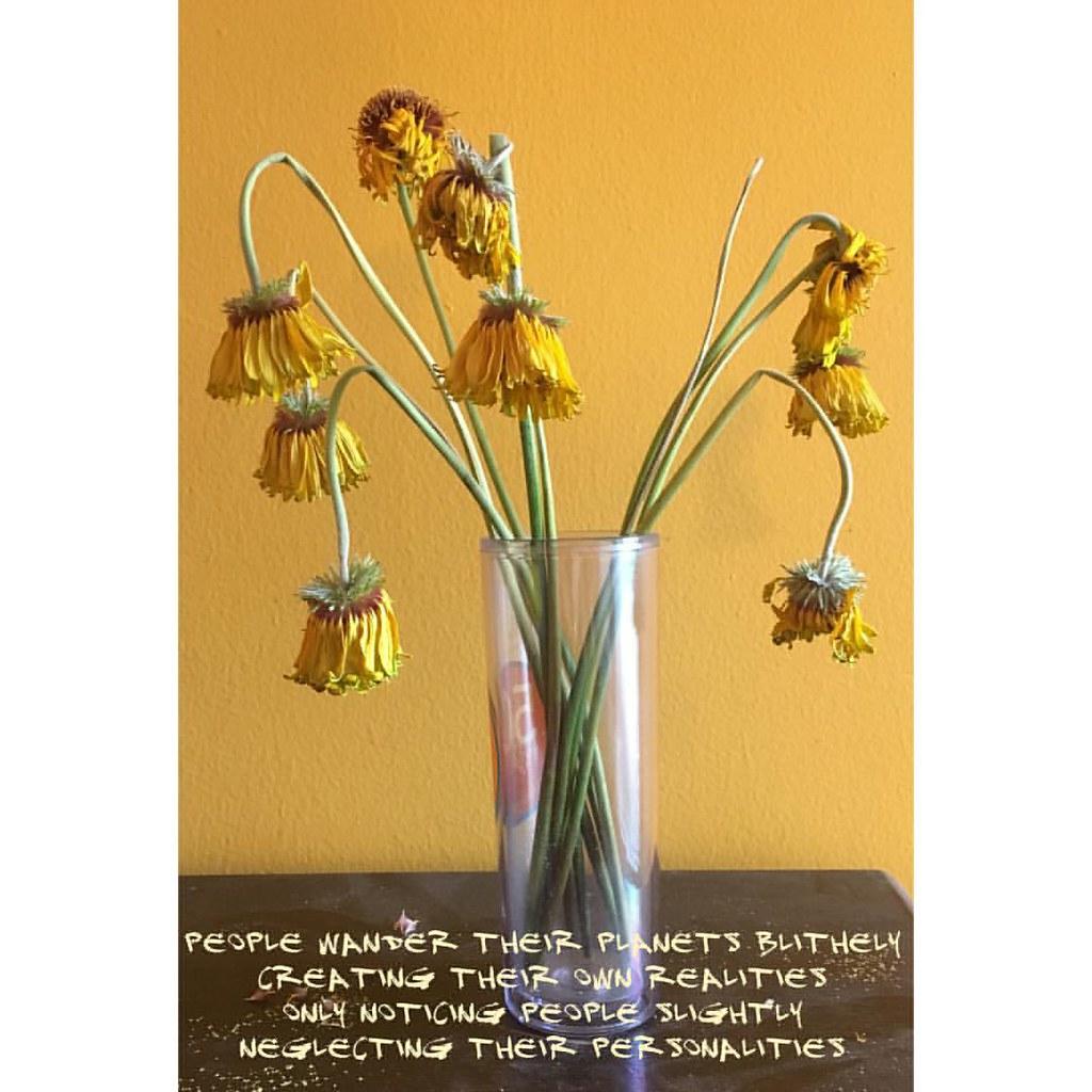 Yellow Flowers Poem Staffordgregoire Flickr