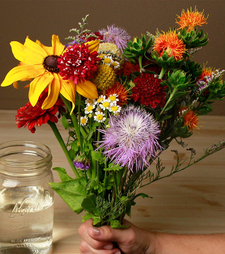 How to Care for Your Fresh Cut Flowers in 5 Easy Steps | by Farm Fresh To You -