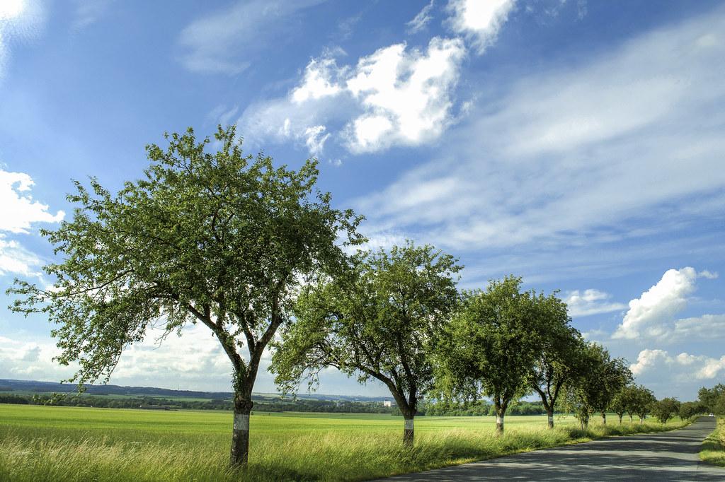 summer outside ostrava czech republic alexander cahlenstein flickr