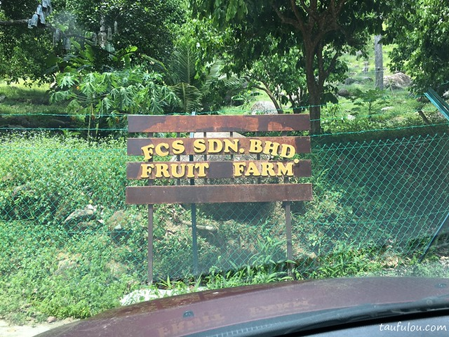 fcs fruit farm (2)