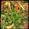 #Thai #Beef & #Broccoli  #Homemade #CucinaDelloZio - fresh cilantro