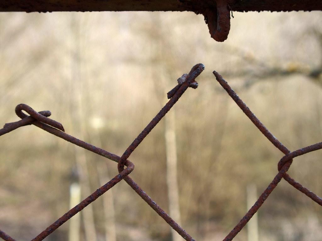 Rostiger Zaun Olympus Digital Camera Jodage Flickr