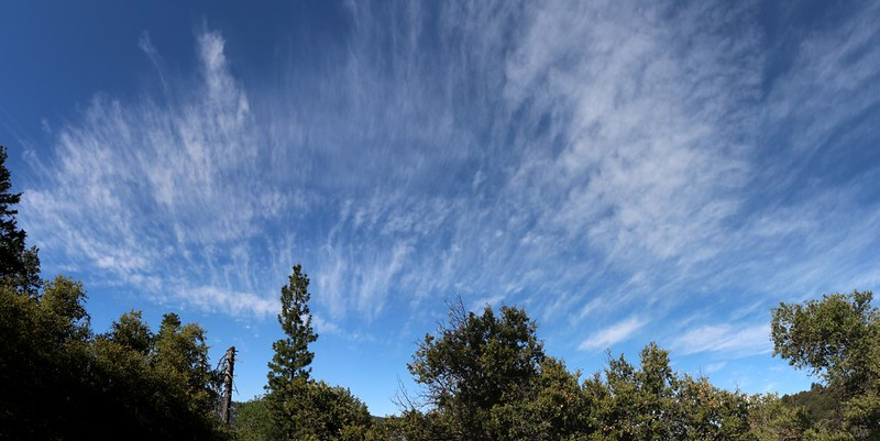 Panorama shot of high cirrus clouds from the Falls Creek Trail