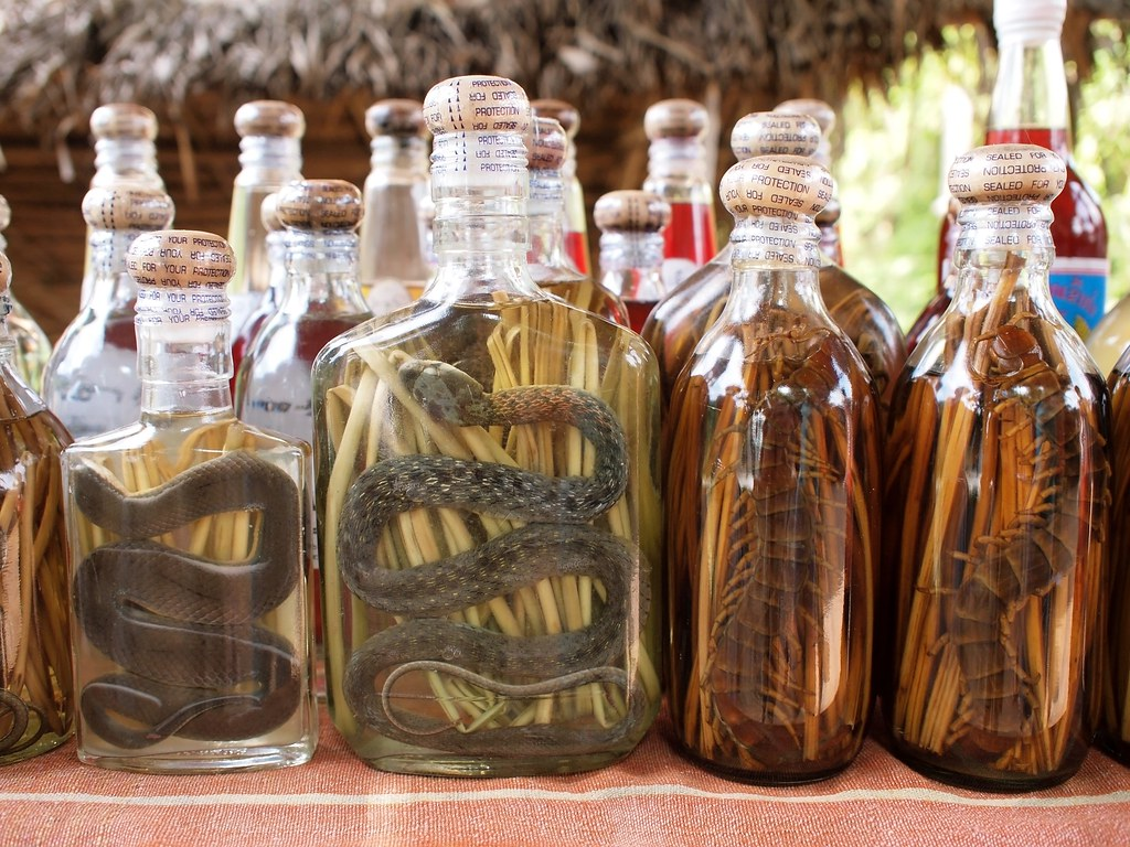 Lao Lao or Laotian Rice Whiskey mixed with snakes and other insects | Flickr