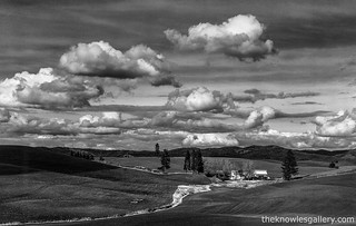 Unknown Farm in the Palouse | by The Knowles Gallery