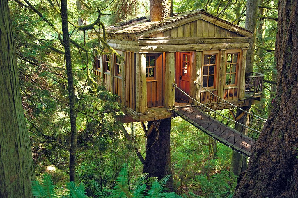 Image result for Treehouse Point