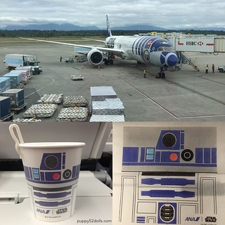 Didn't realize I was on a #Starwars themed plane until I was about to board (at night) but managed to take some photos after we landed LOL #ana | by puppy52