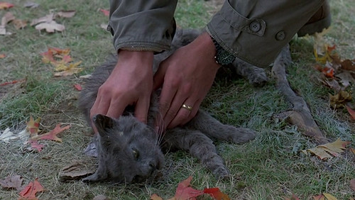 Pet Sematary - screenshot 9