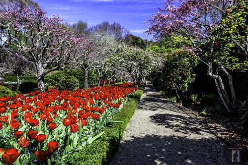 Filoli Gardens California Central Coast 2015 03 24 Flickr