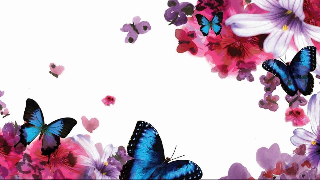 Resultado de imagem para HP butterfly