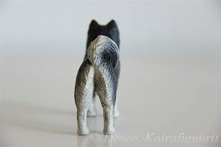 Suomenlapinkoira - Finnish Lapphund