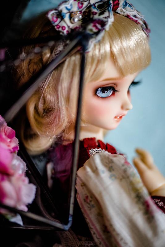 DSC_6030