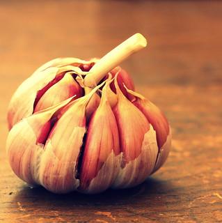 Garlic Garlic