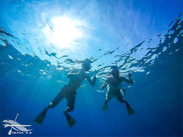 Snorkeling Sosua Dominican Republic
