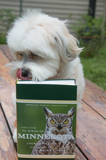 Laura's book: Pip approved! | by Laura Erickson