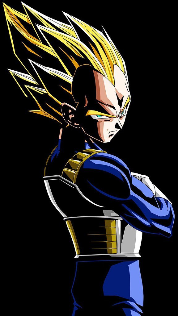 Vegeta Dragon Ball Z Anime Mobile Wallpaper 1080x1920