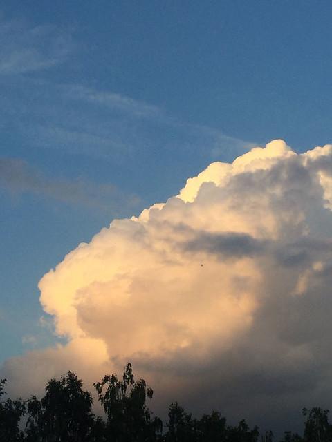 ...golden clouds