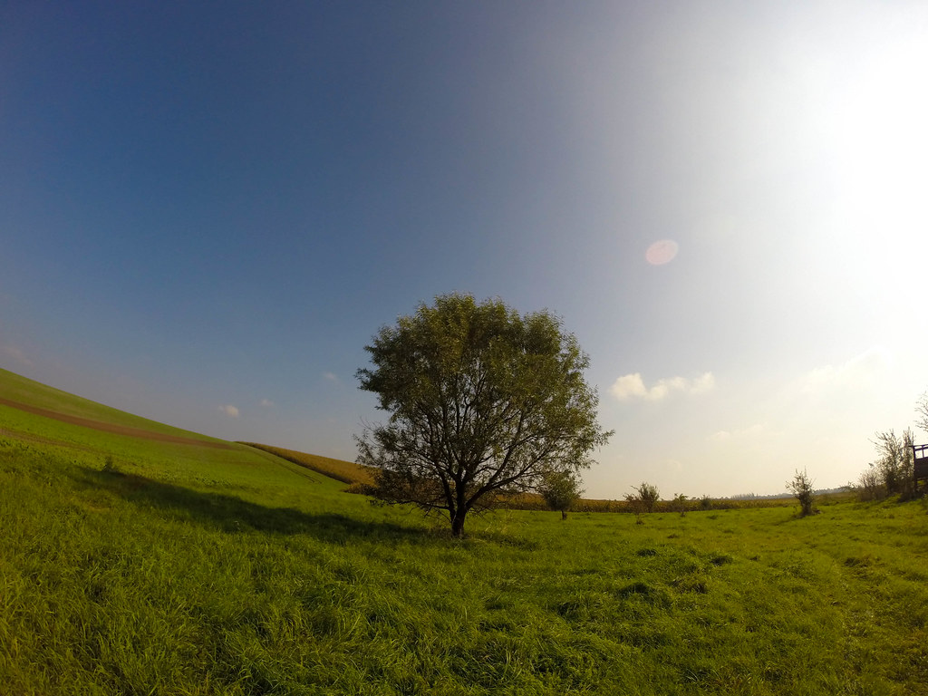 GoPro Landscape Photo