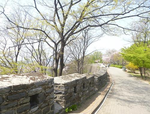 C16-Seoul-Mont Namsan-Descente-j7 (2)