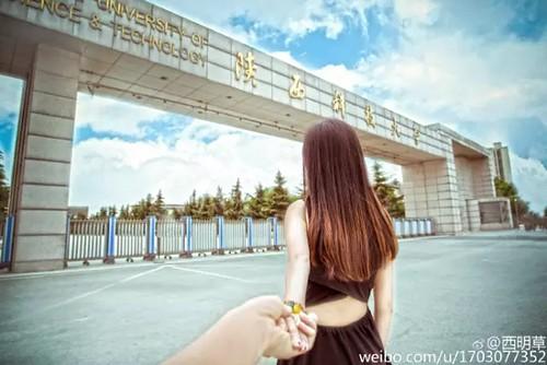 53079-3 陕西科技大学