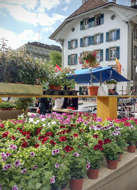 Bern flower fair