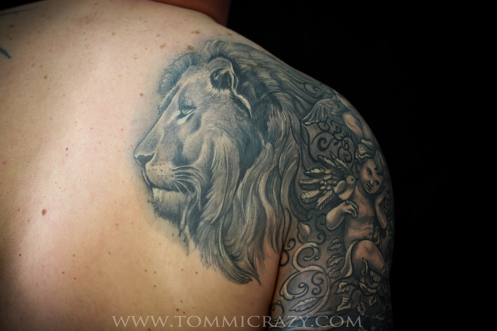 small frame 9x6 brett lion sleeve healed | Crazy Tommi | Flickr