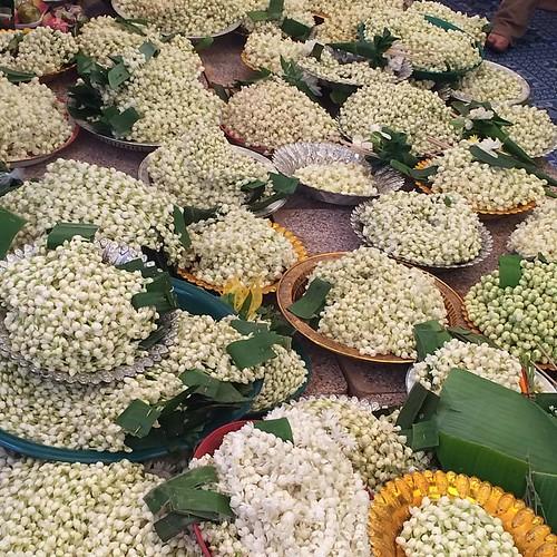 พวงมาลัยมะลิ: พวงมาลัยดอกมะลิแก้บน 🙏