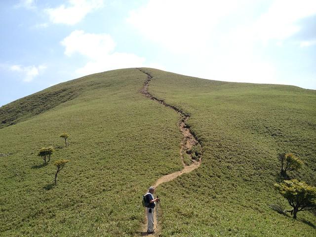 竜ヶ岳 遠足尾根より山頂