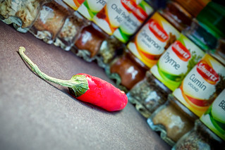 Mr Chilli - King of the Herbs and Spices | by aronalison